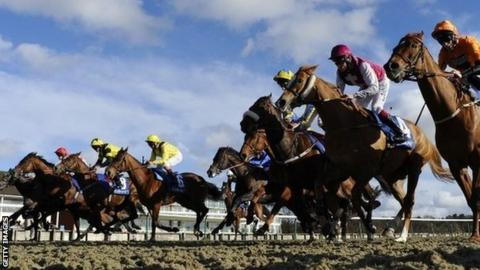 Runners leaving the stalls at Lingfield racecourse