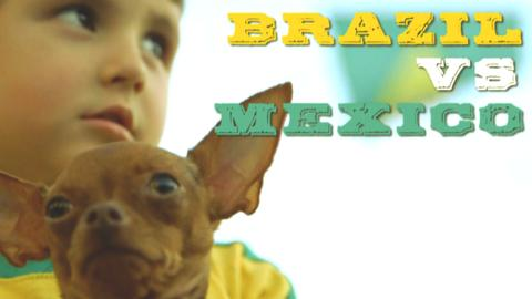 A young Brazilian fan with a small dog