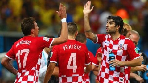 Mario Madzukic celebrates after scoring against Cameroon