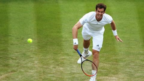 Wimbledon 2014: Andy Murray loses just two games v Blaz Rola