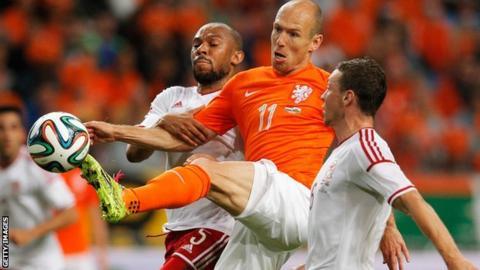 Danny Gabbidon pressures Arjen Robben