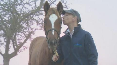 Frankel's foal is about to receive a kiss after being sold in county Kildare on Thursday