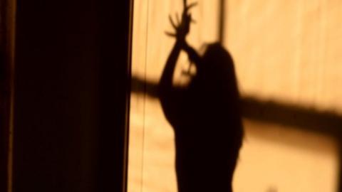 shadow of a bollywood dancer