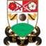 Team badge of Barnet