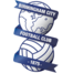 Team badge of Birmingham City