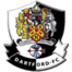 Team badge of Dartford
