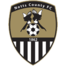 Team badge of Notts County