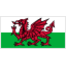 Team badge of Wales