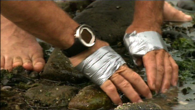 Steve Backshall's hands looking for shellfish on the seashore