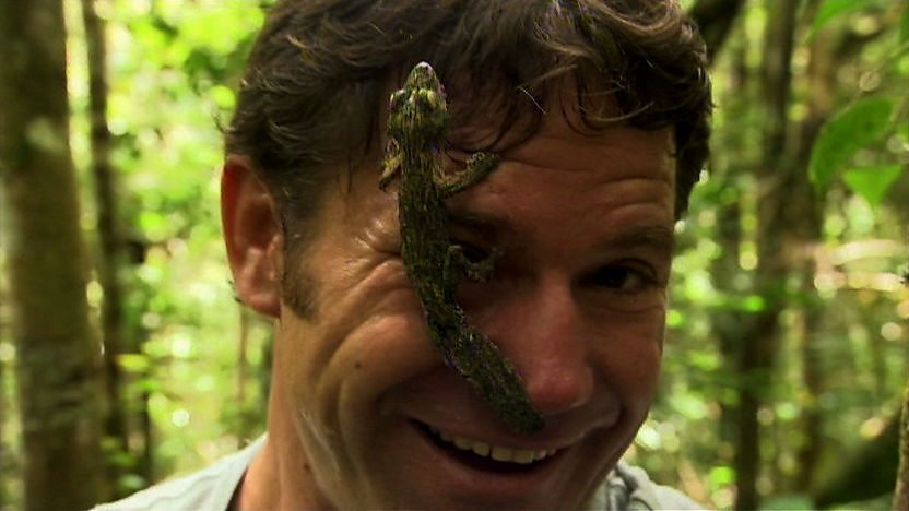 Steve Backshall with a gecko on his face