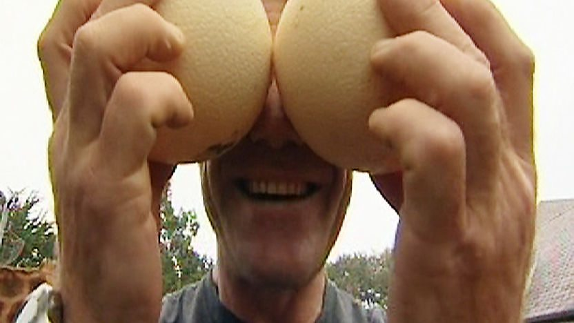 Steve Backshall holding 2 large ostrich eggs over his eyes