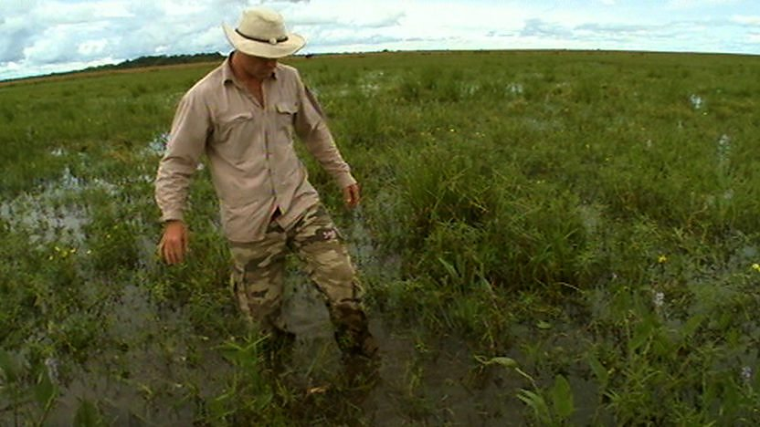 Steve Backshall walking through marshland