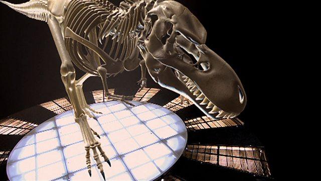 Fleshing out T-rex bones