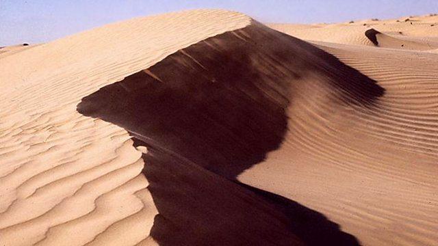 Music Planet - Algeria