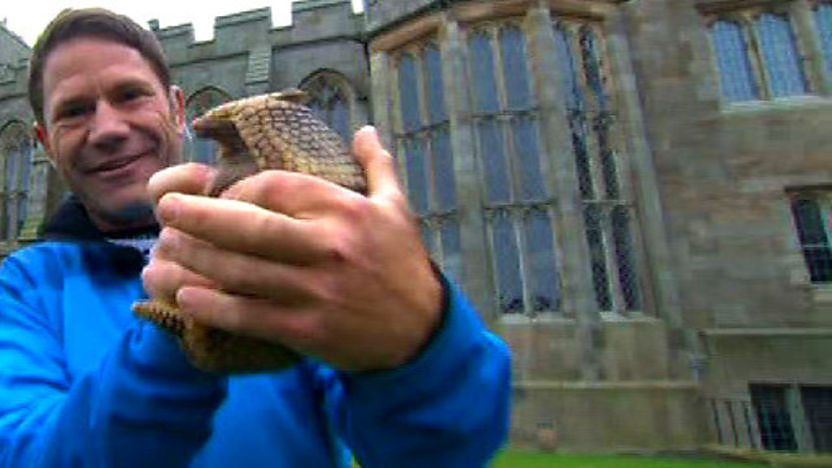 Steve Backshall holding an armadillo