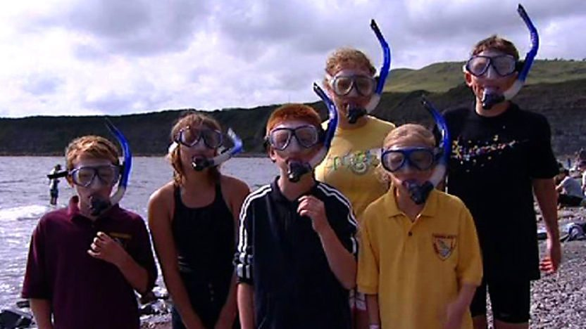 Group of swimmers wearing snorkelling gear on the beach