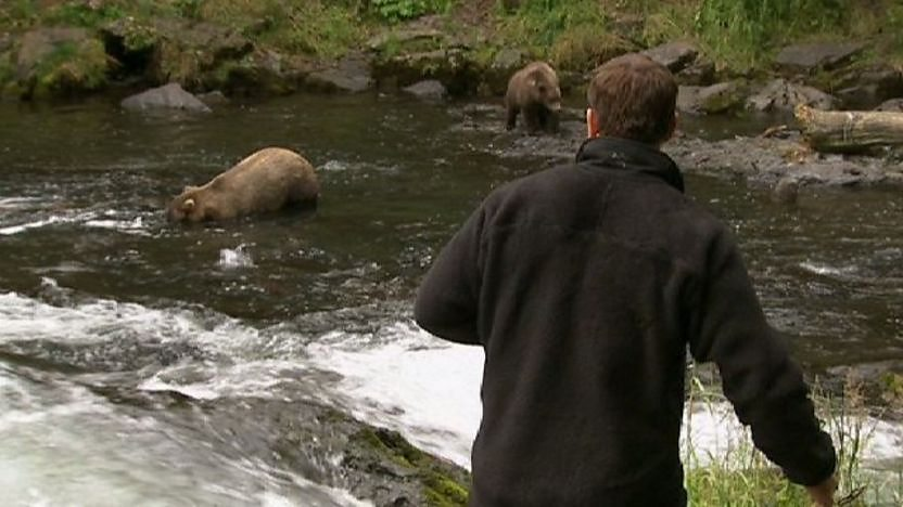 Steve Backshall looking at grizzly bears in a river