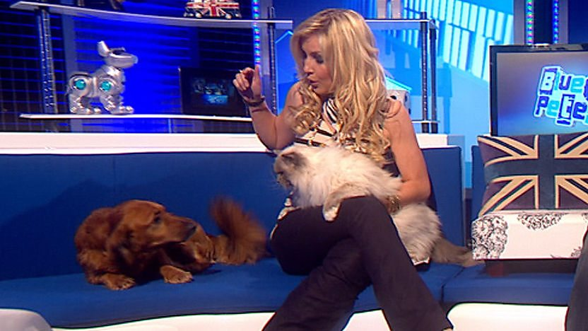 Socks the cat batting Barney the Blue Peter dog on the head with his paw while Helen Skelton looks shocked.