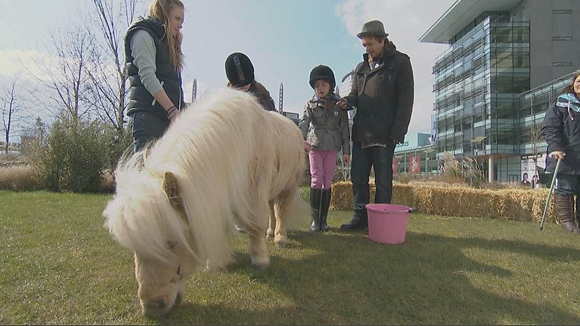 Barney with the miniature horses and their owners