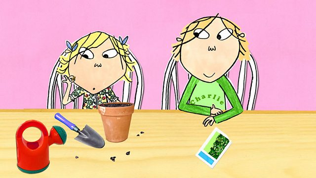 Charlie and Lola: Series 3: What Can I Wear for Halloween?