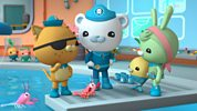 Octonauts: 9. The Remipedes
