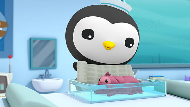 Octonauts: Series 1: The Orcas