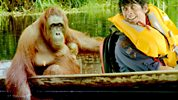 Andy's Wild Adventures: 1. Orangutans