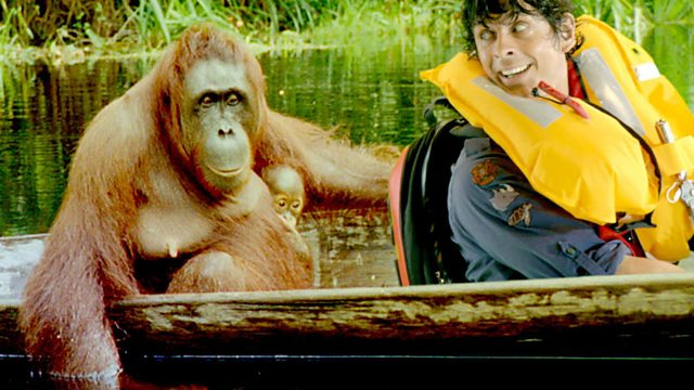 Andy's Wild Adventures: Series 2: Orangutans