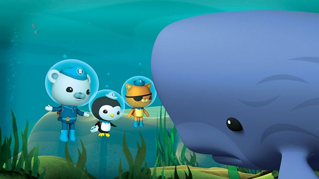 Octonauts: Series 2: Sperm Whale