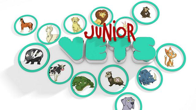 Junior Vets: Episode 4