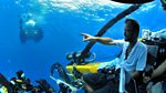 Natural World: 2013-2014: Giant Squid: Filming the Impossible - Natural World Special