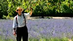 Monty Don's French Gardens: The Gourmet Garden