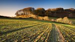 Farming Today: Farming the Four Corners of the UK