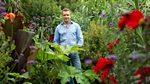 British Gardens in Time: Nymans