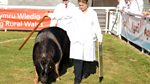 Royal Welsh Show: 2014: Highlights