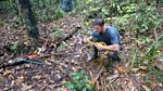 Deadly on a Mission: Pole to Pole: Jungle Expedition