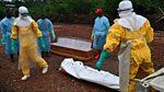 Click: Ebola Goes Viral