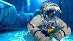 Human Universe: Apeman - Spaceman