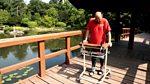 Panorama: To Walk Again