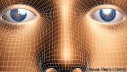 Gráfico de un rostro