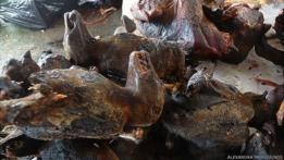 Murciélagos asados a la venta en Ghana