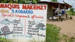 Restaurante cerca de Abiyán