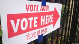 Votantes EEUU