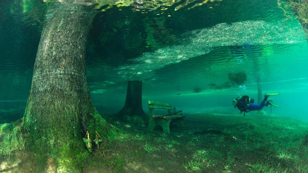 Diving Green Lake, Austria (Credit: Credit: Westend61 GmbH/Alamy)