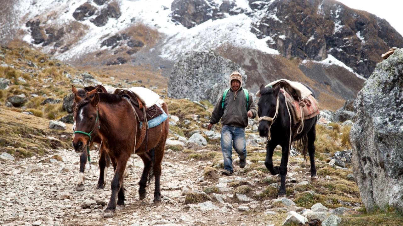 Trekking to Mt Salkantay's highest pass (Credit: Credit: Guy Wilkinson)