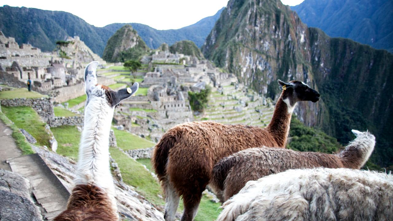 A quiet arrival at Machu Picchu (Credit: Credit: Guy Wilkinson)