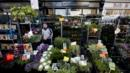 Columbia Road Flower Market, East London, England (Credit: Doug McKinlay/LPI)