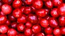 Does cranberry juice stop cystitis? (Credit: Copyright: Thinkstock)