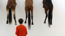 Horses for courses (Credit: Sebastien Bozon/Getty)