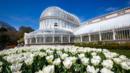Belfast gardens  Botanic Gardens (Credit: Chris Hill/National Geographic Creative)